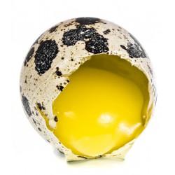 Яйца от пъдпъдъци 12бр.