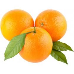 Портокали Цена за 100g