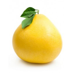 Грейпфрут Помело Цена за 100g